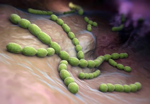 Pneumokoki, meningokoki, rotawirusy – śmiertelne zagrożenie dla Twojego dziecka
