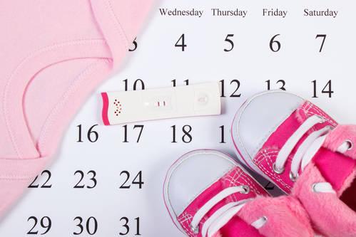Kalendarz ciąży: drugi trymestr