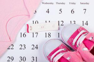 drugi trymestr kalendarz ciazy