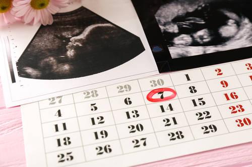 Kalendarz ciąży: pierwszy trymestr